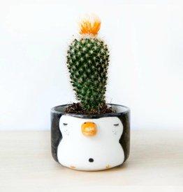 Noe Marin Ceramiste Ceramic - cute bowl - Pingouin