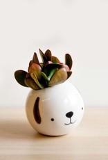 Noe Marin Ceramiste Céramique - mignon petit pot rond - Chien