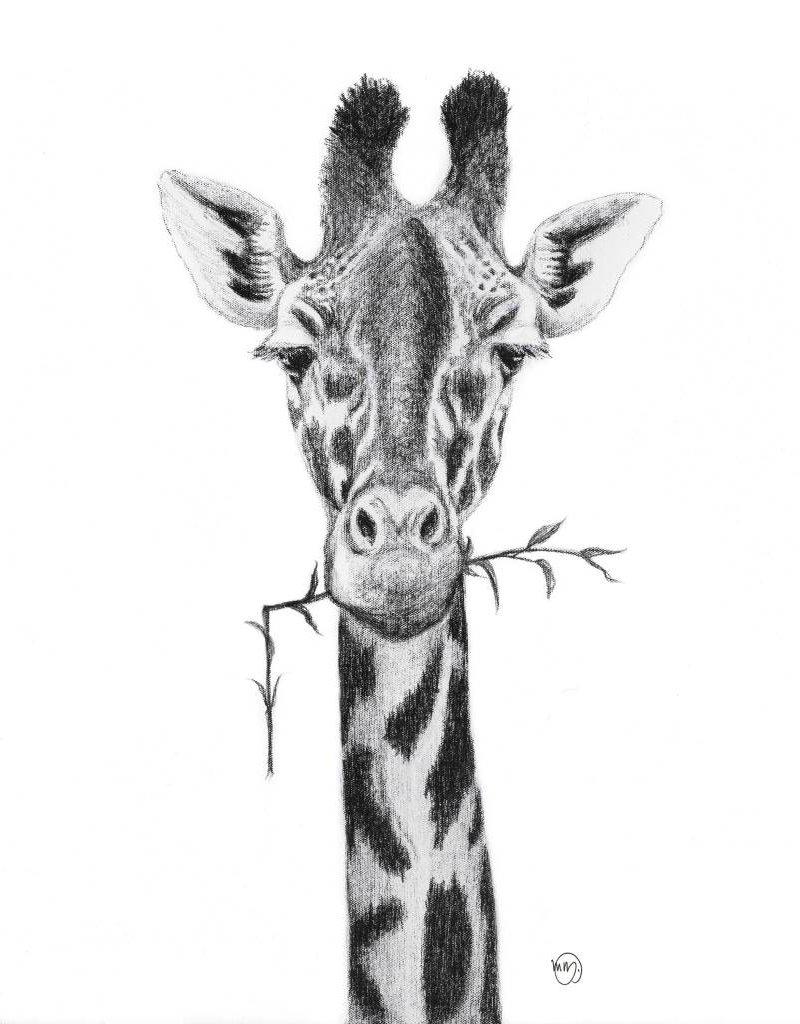 Le nid atelier Illustration - Giraffe