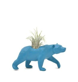 Wild Child Animal Plante - Petit - Ours bleu