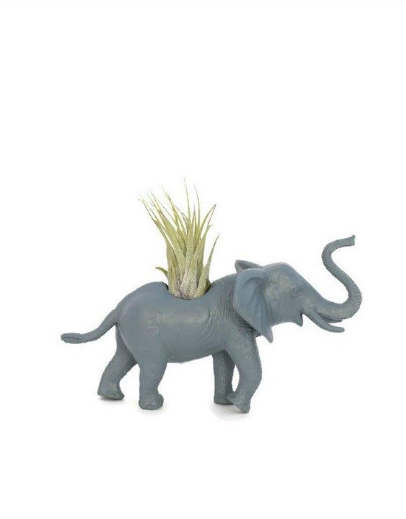 Wild Child Animal Plante - Petit - Éléphant gris