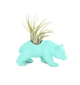 Wild Child Animal Plante - Petit - Panda turquoise