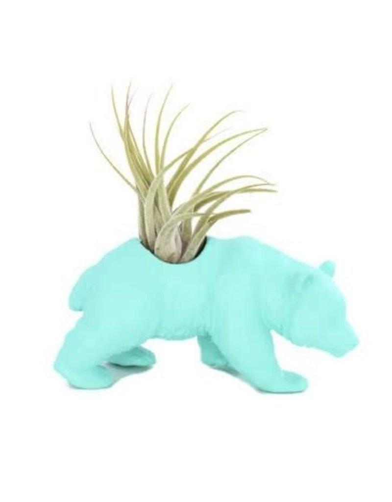 Wild Child Animal Plante - Petit - Panda turquoise