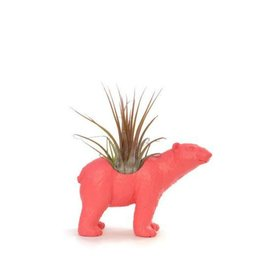 Wild Child Animal Plante - Petit - Ours polaire rose