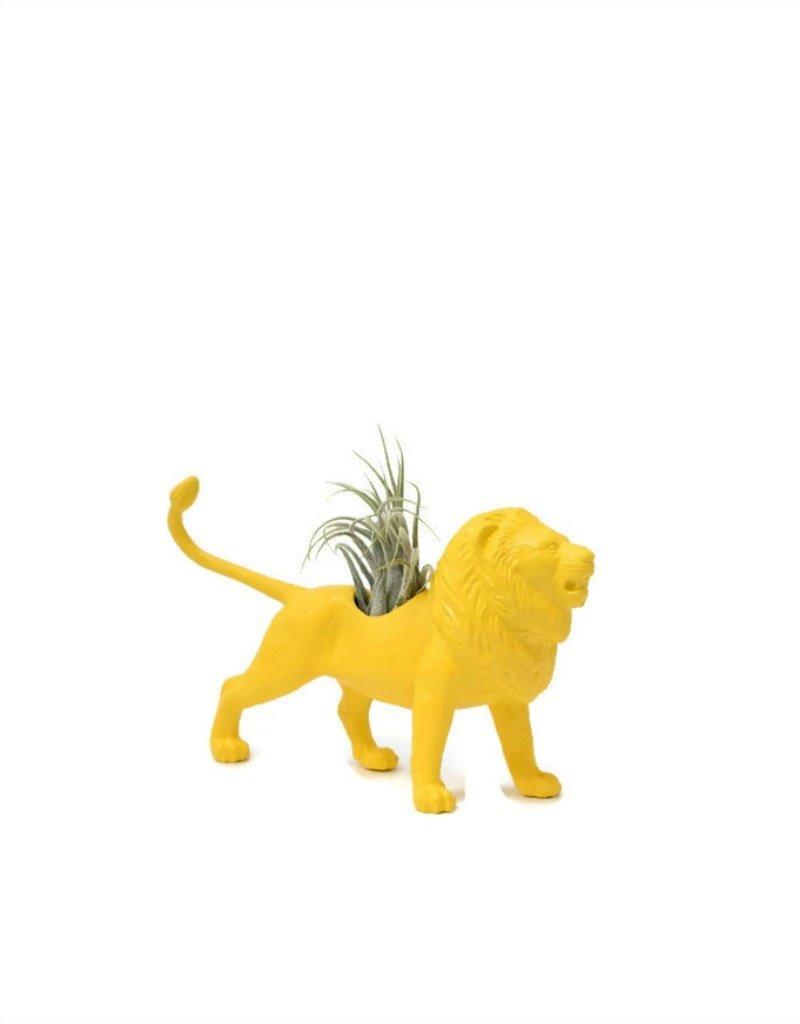 Wild Child Animal Plante - Petit - Lion jaune