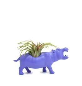 Wild Child Animal Plante - Petit - Hippopotame mauve