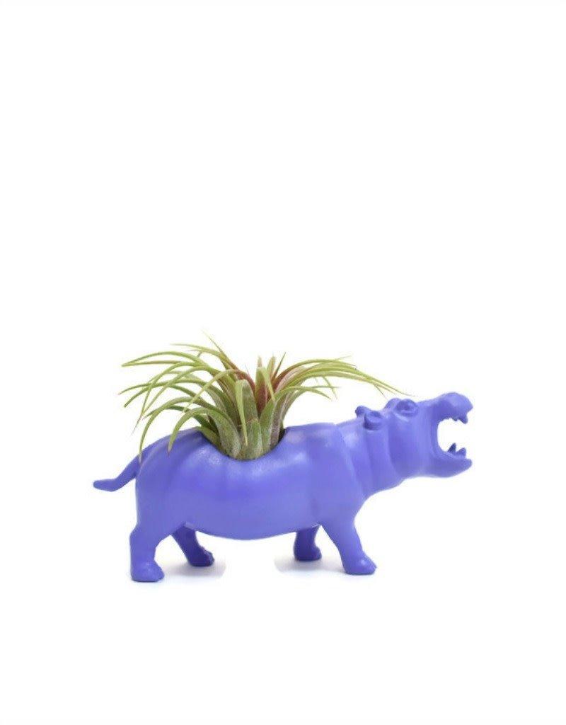 Wild Child Animal Plante - Petit - Hippopotame mauve