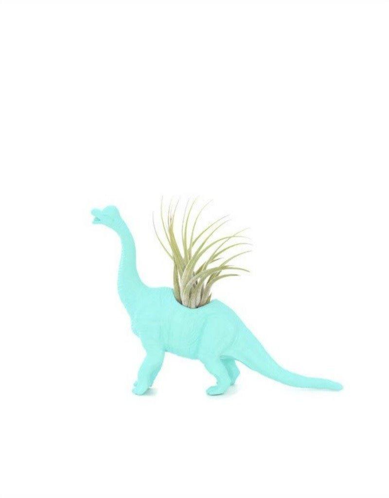 Wild Child Dinosaure Plante - Petit - Brachiosaure turquoise
