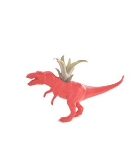 Wild Child Dinosaure Plante - Petit - T-Rex rose
