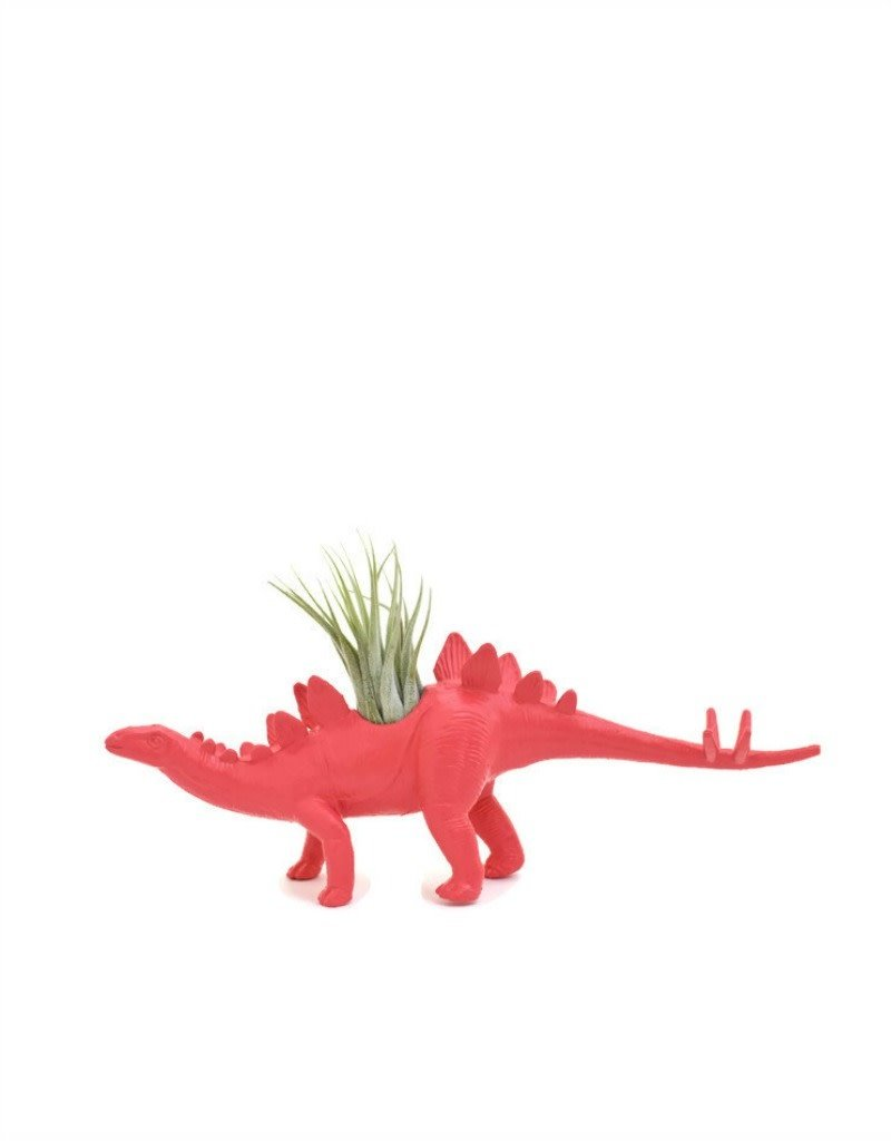 Wild Child Dinosaure Plante - Petit - Stégosaure rose