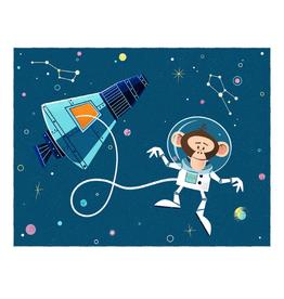 coucou illustration Illustration - HAM (ASTROCHIMP)