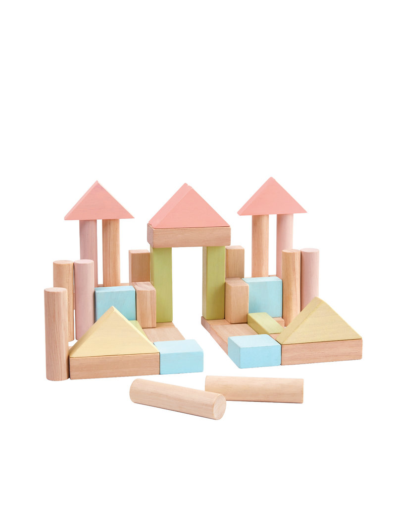 Plan Toys Blocs de construction - 40 unités