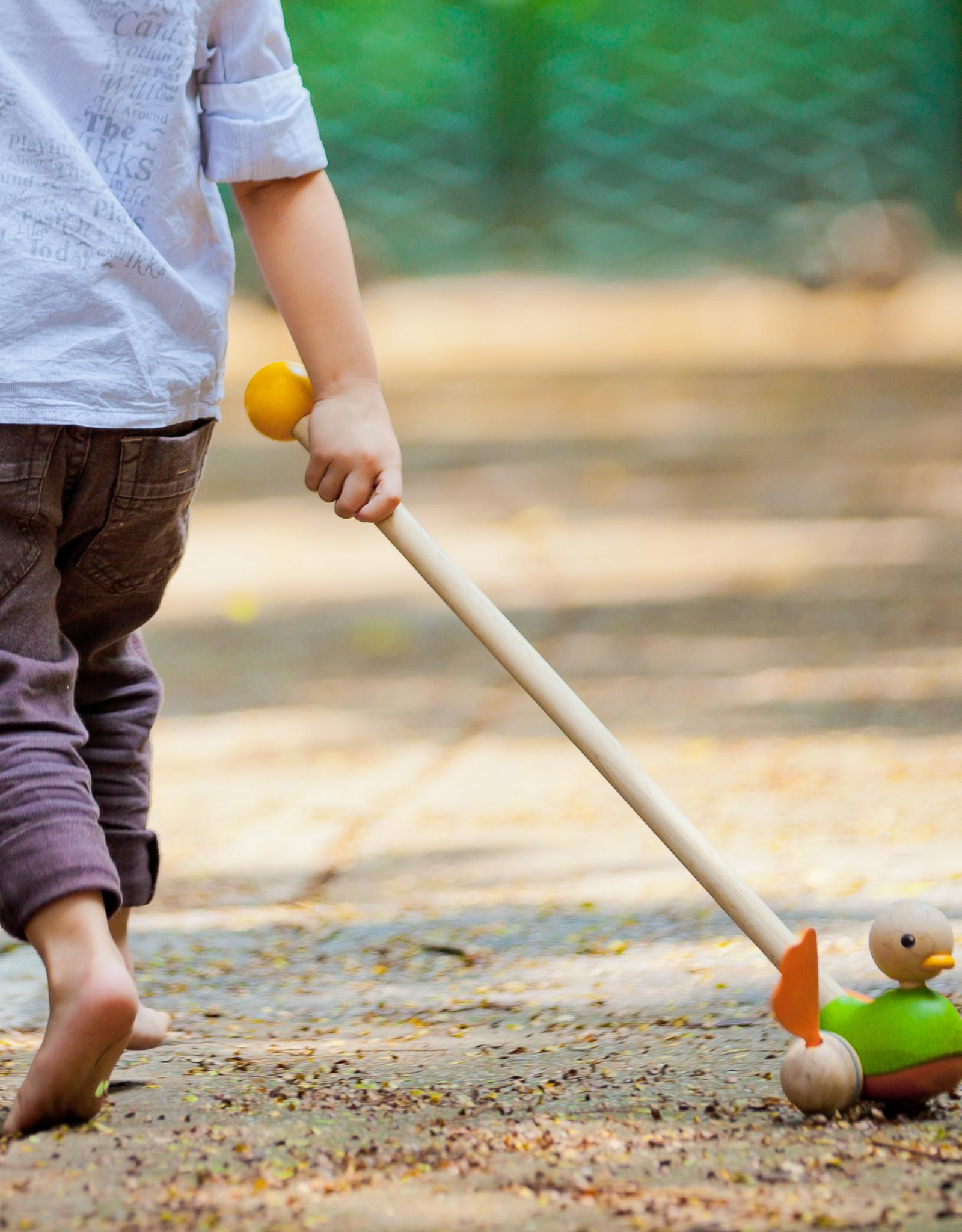 Plan Toys Canard à promener