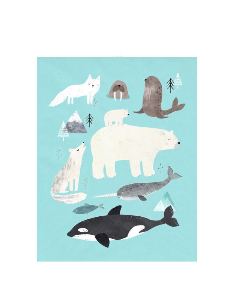 Petit Monkey Affiche - animaux de l'arctique
