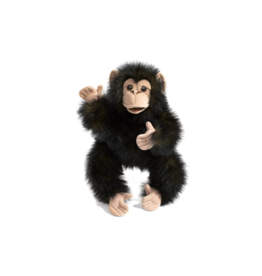 Folkmanis Baby chimpanzee puppet