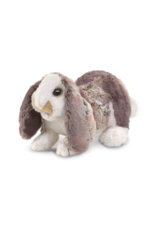 Folkmanis Baby lop Rabbit puppet