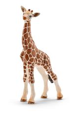 Schleich Animal - Bébé girafe