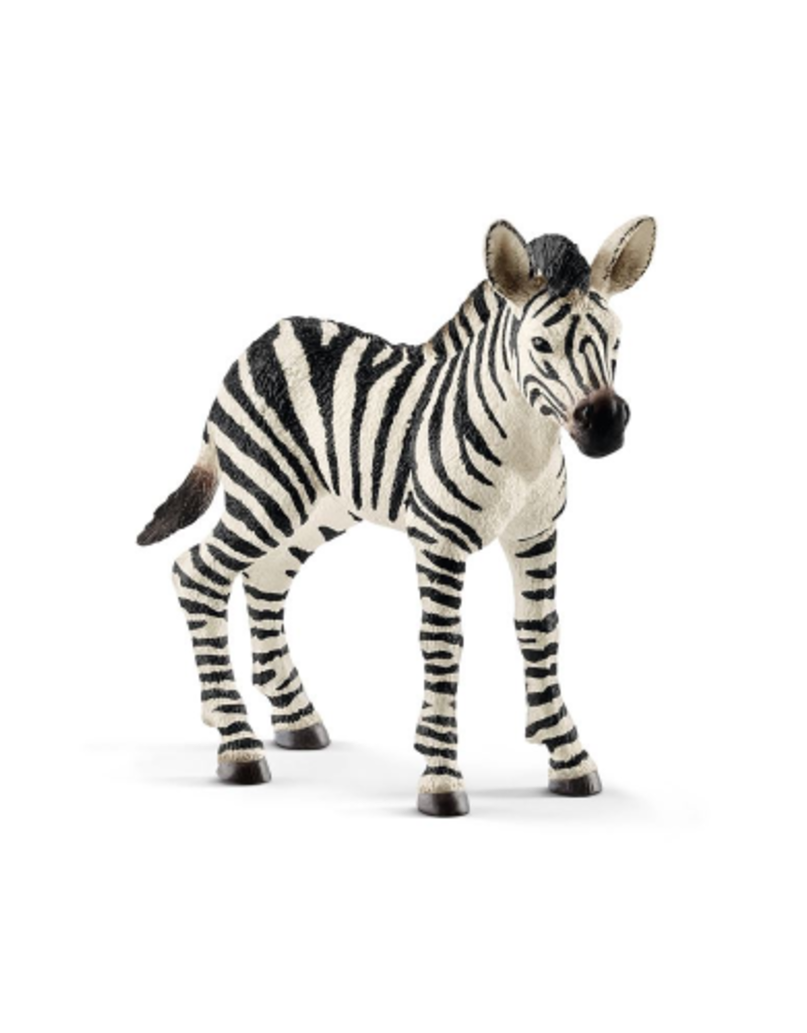Schleich Animal - Baby zebra