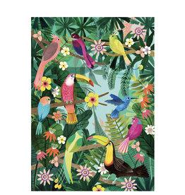 Petit Monkey Affiche - Oiseaux de la forêt tropicale