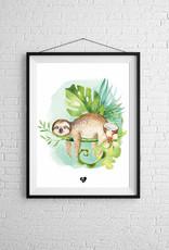 Zack et Livia Illustration - Sleeping sloth