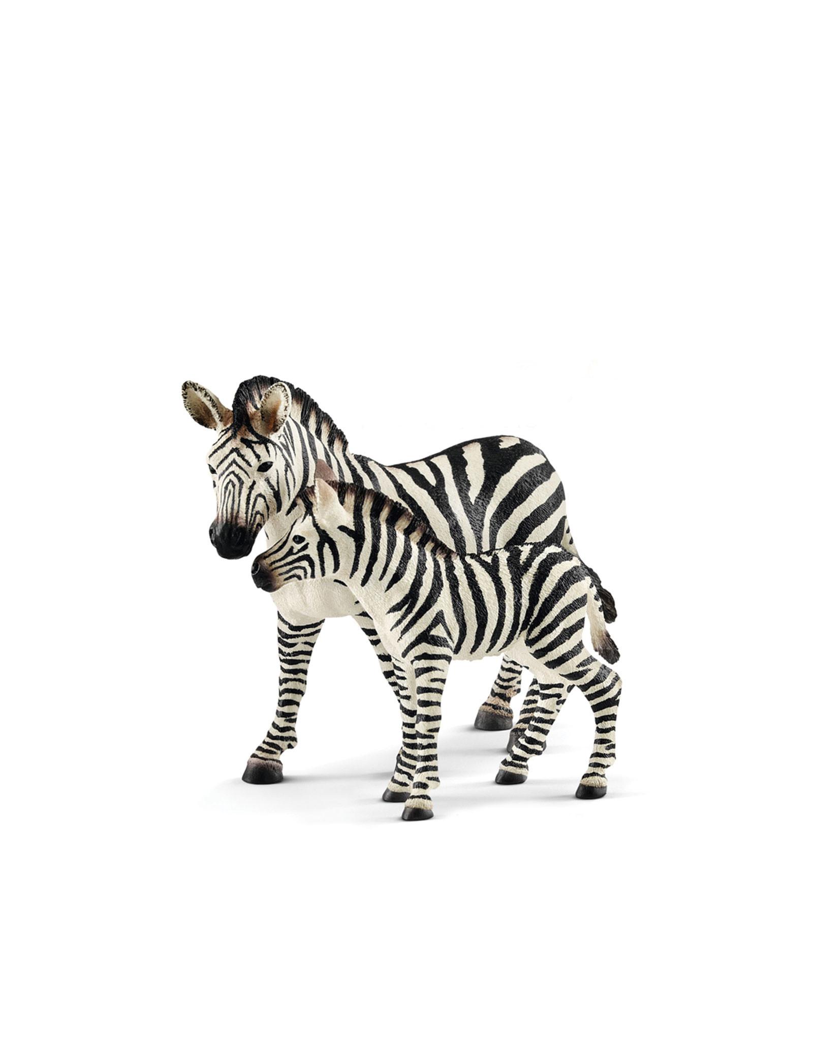 Schleich Animal - Female Zebra