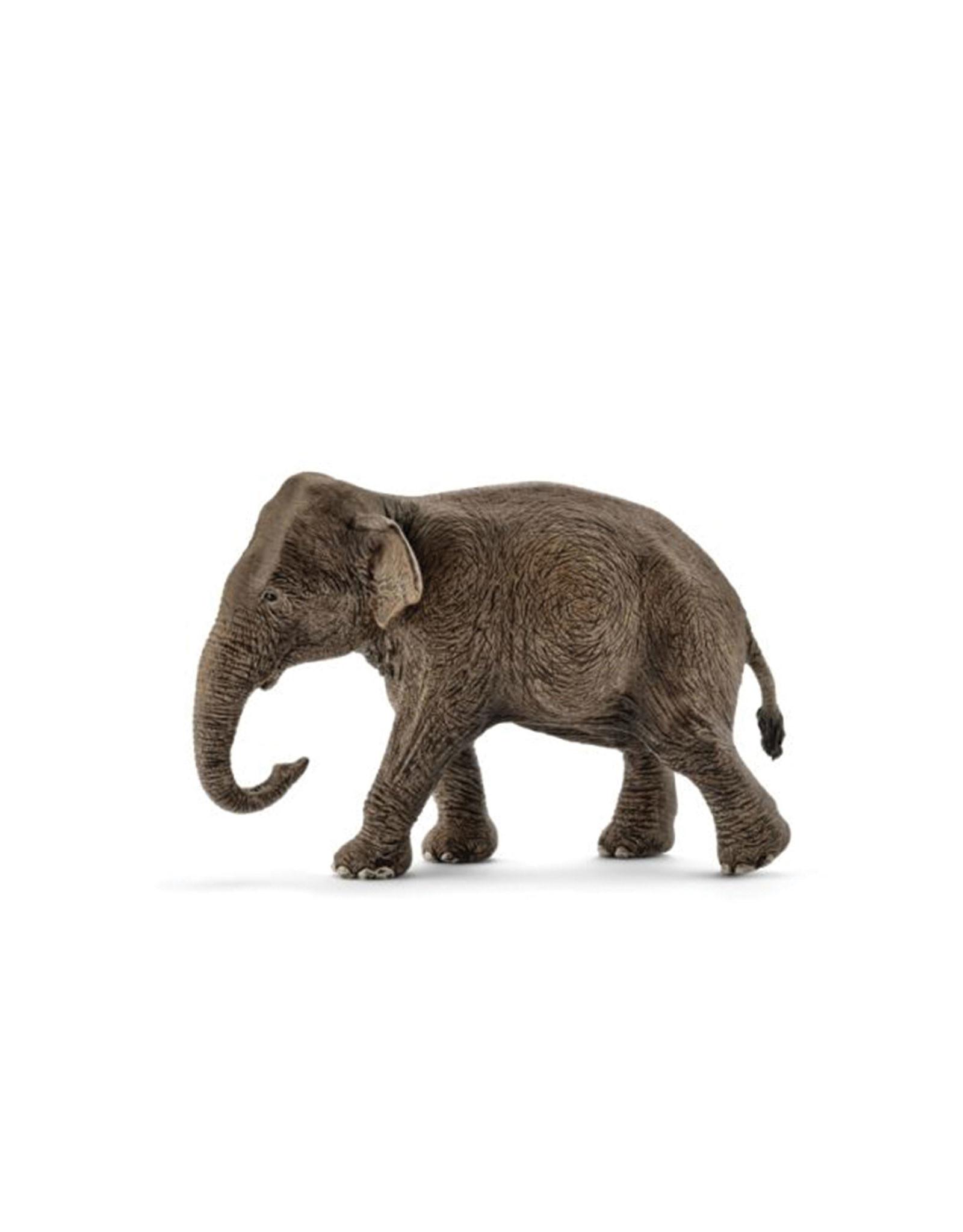 Schleich Animal - Female Asian Elephant