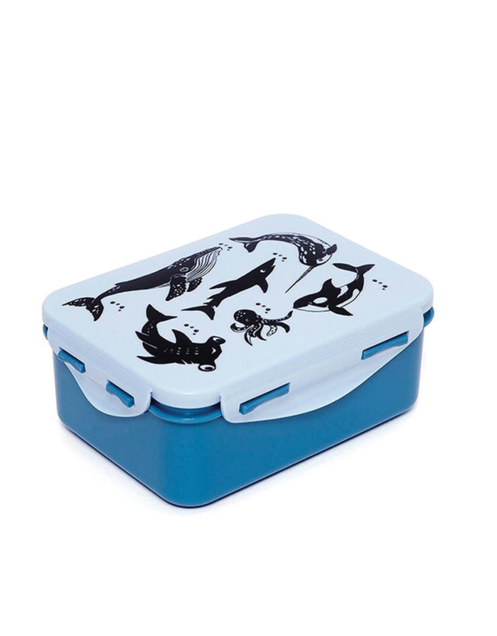 Petit Monkey Lunch Box - Sea Animals