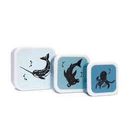 Petit Monkey Ensemble de contenants à aliments - Animaux de l'océan bleu