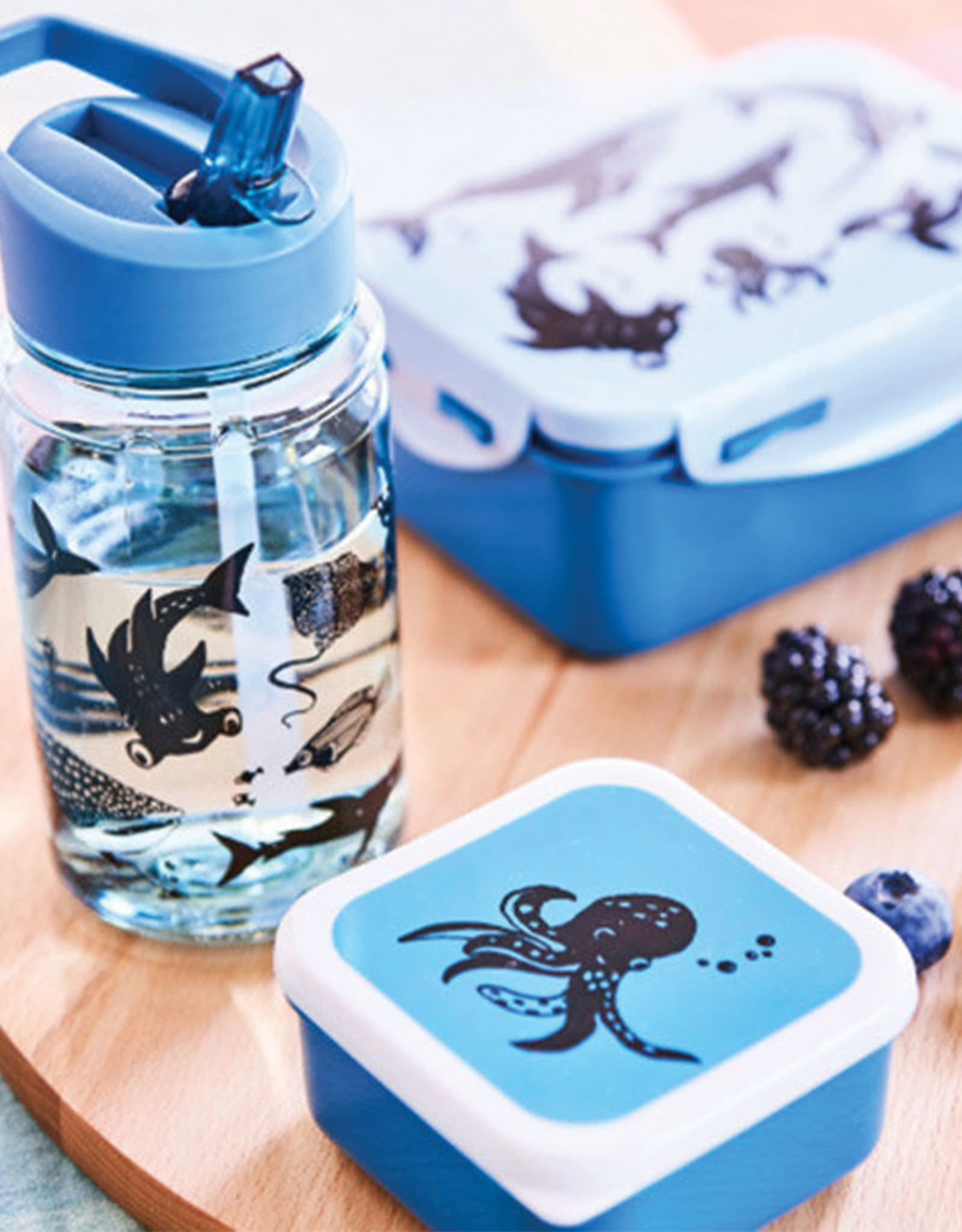 Petit Monkey Snackbox Set -  Sea Animals