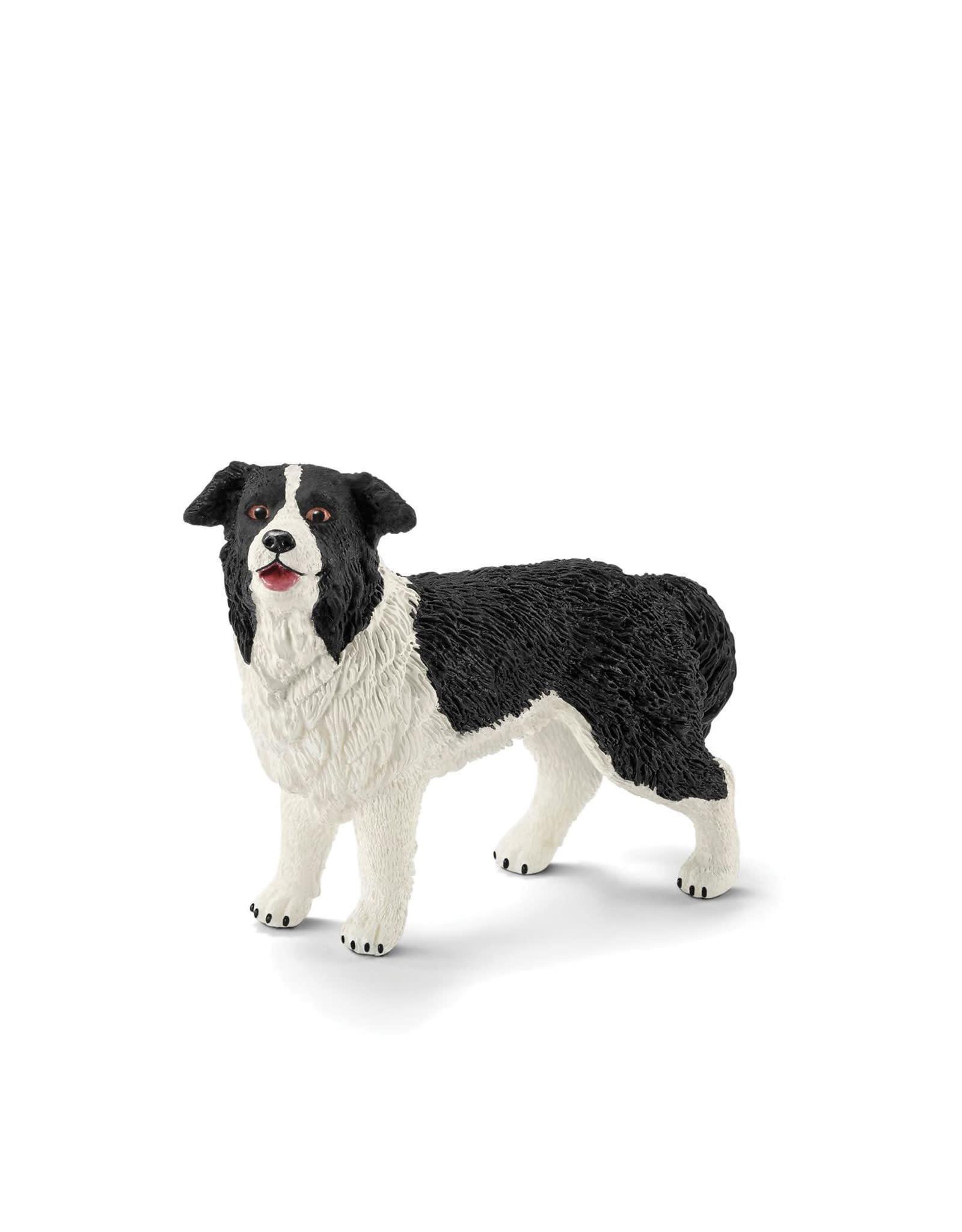 Schleich Dog - Border Collie