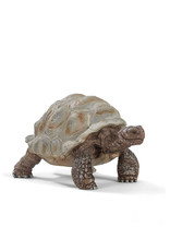 Schleich Animal - Giant Tortoise