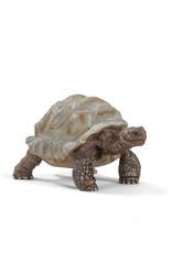 Schleich Animal - Giant Tortoise