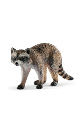 Schleich Animal - Raton laveur