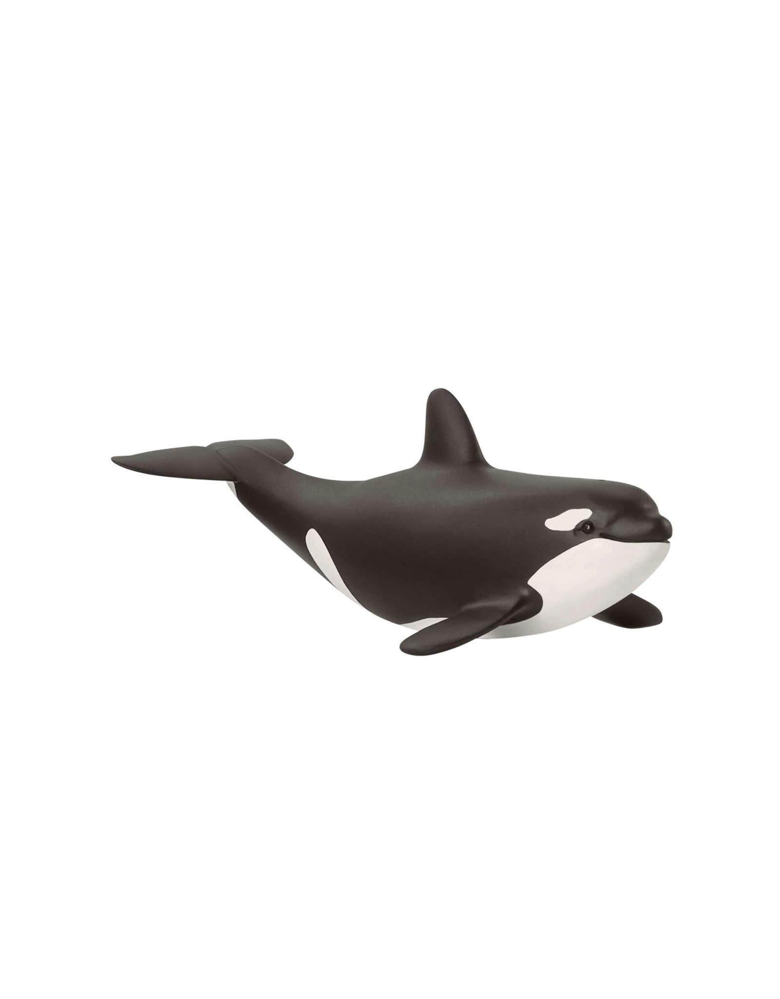 Schleich Animal - Baby Orca