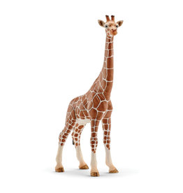 Schleich Animal - Female Giraffe