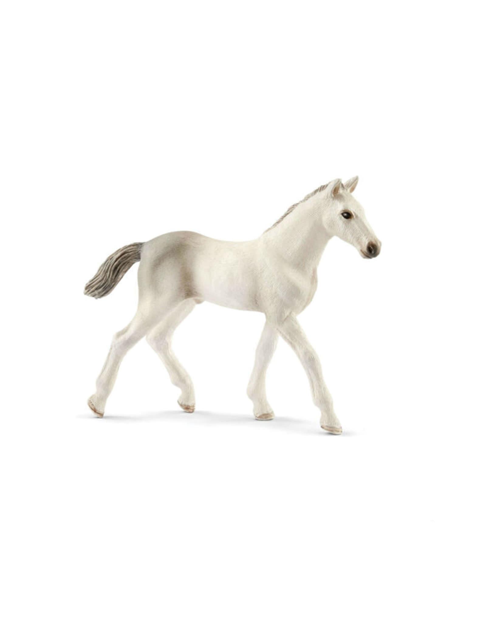 Schleich Horse - Holsteiner Foal