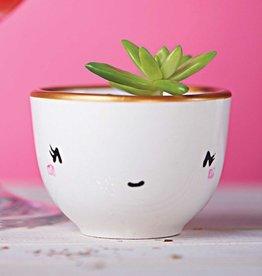 Serif & Glyph Little Cup - MOMO Shy Cat