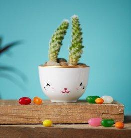 Serif & Glyph Little Cup - TIPIN Bunny