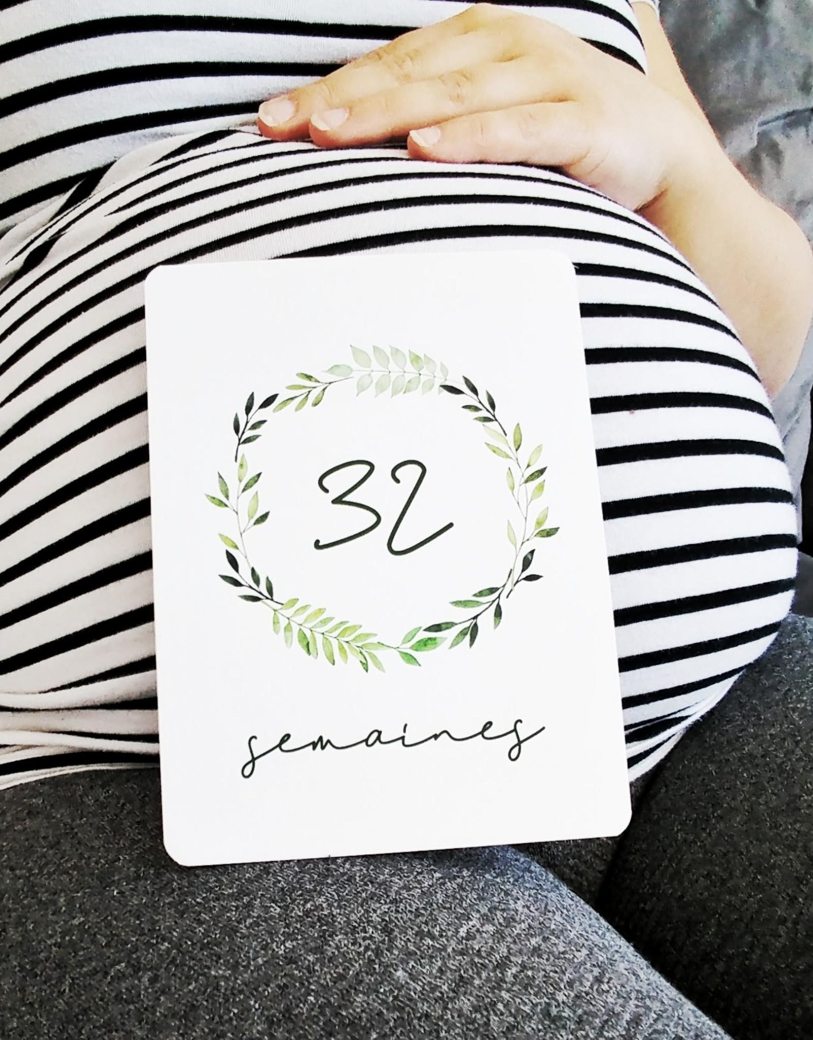 Moments ancrés Cartes étapes - Ma grossesse - Feuillage vert