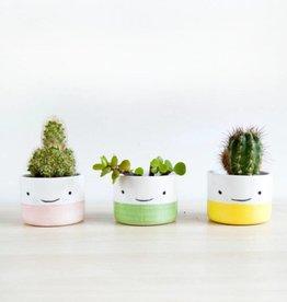 Noe Marin Ceramiste Ceramic - cute bowl