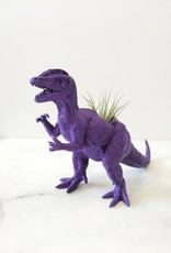 Wild Child Dinosaure Plante - Grand - Carnivore mauve