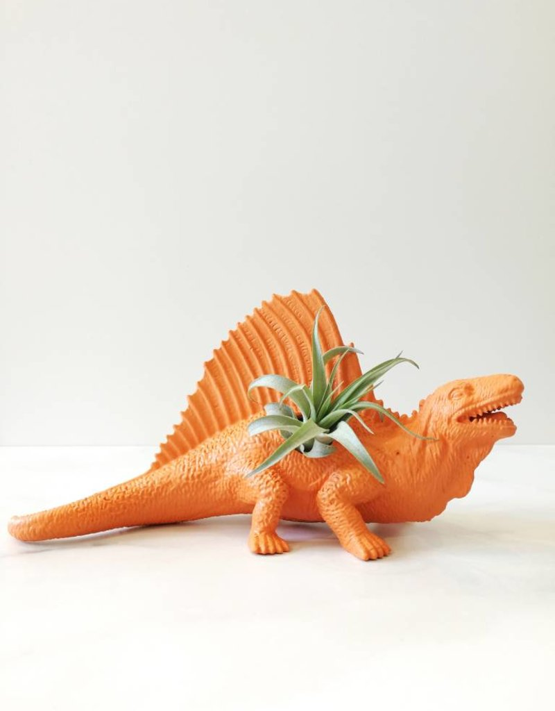 Dinature Dinosaure Plante - Grand - Orange avec crête