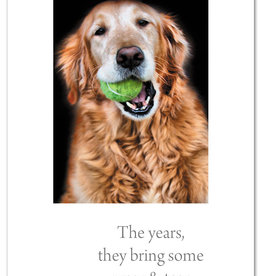 Cardthartic Cardthartic - Golden Gnawing Tennis Ball Birthday Card