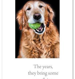 Cardthartic - Golden Gnawing Tennis Ball Birthday Card
