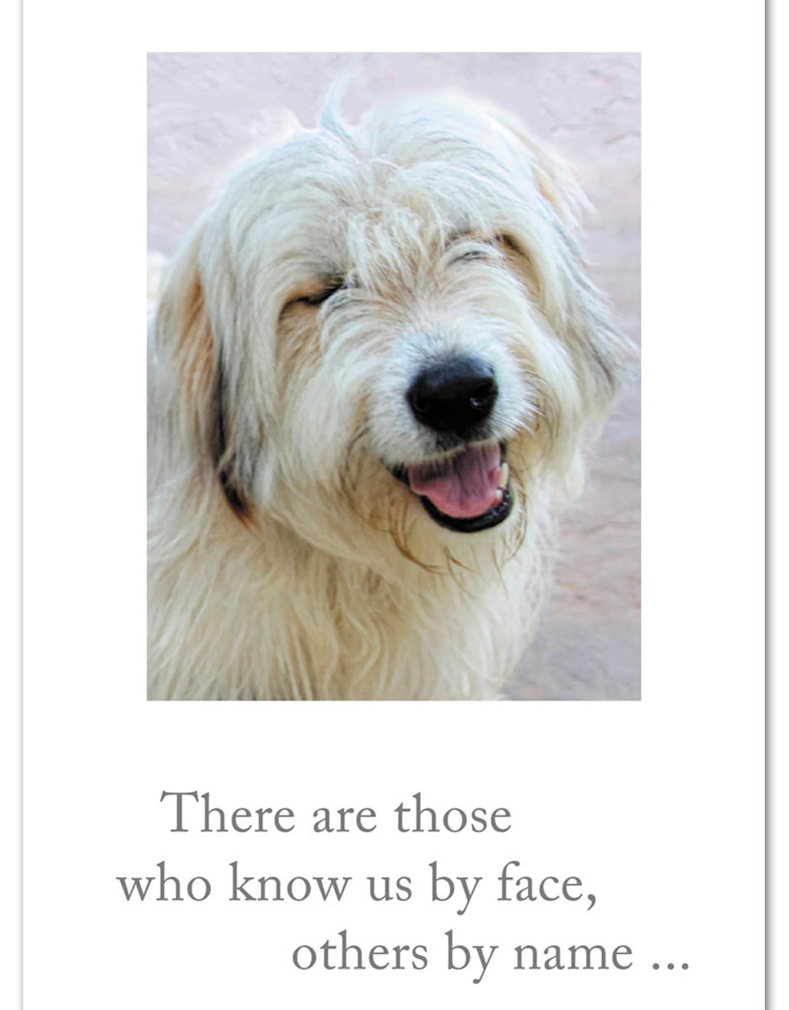 Cardthartic Cardthartic - Smiling Card Borthday Card