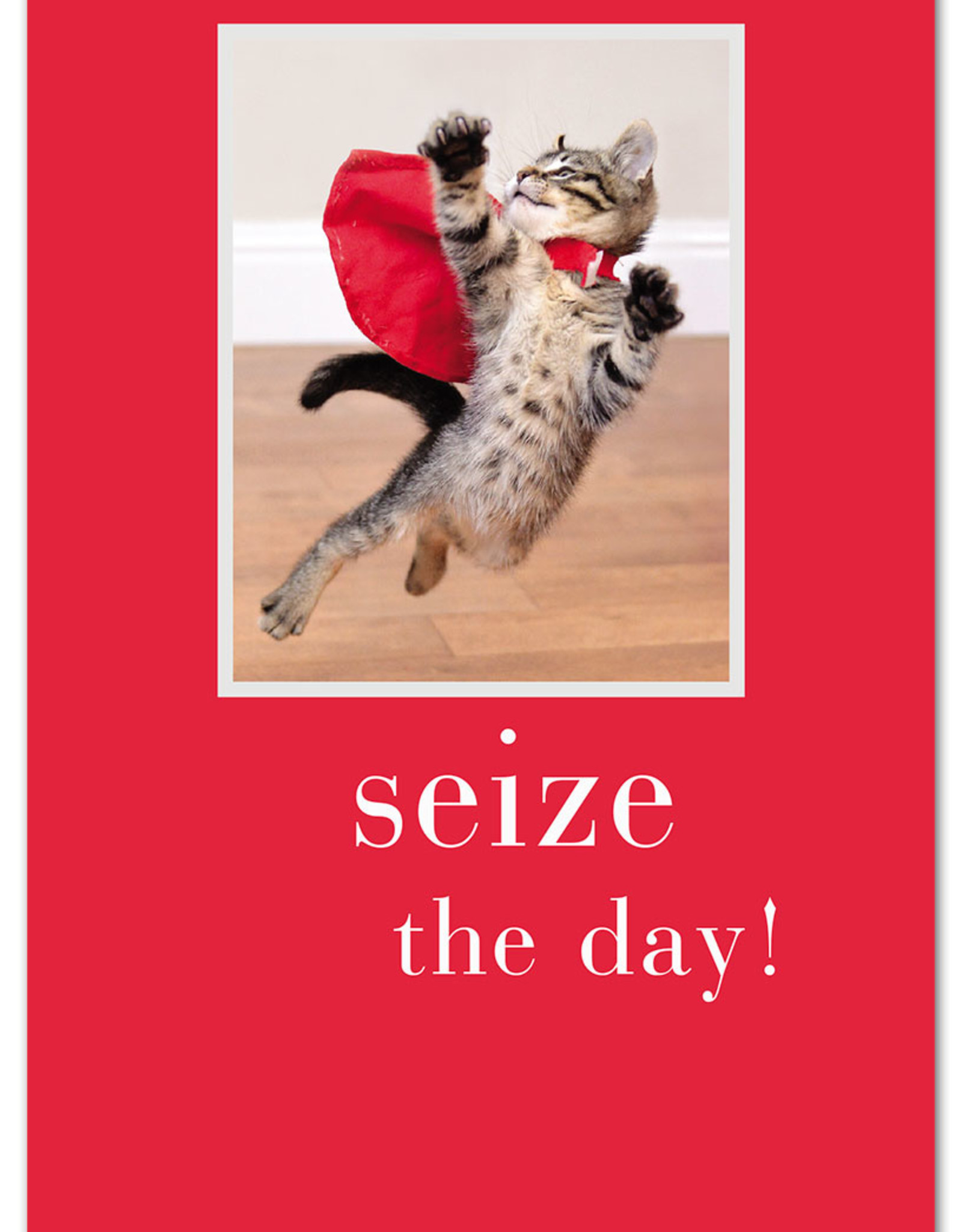 Cardthartic Cardthartic - Seize the Day Birthday Card