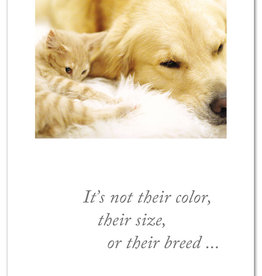 Cardthartic - Curled Cat & Dog Pet Sympathy Card