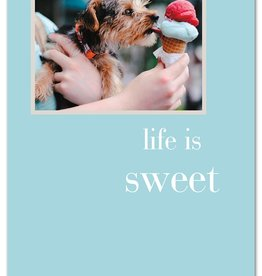 Cardthartic - Life Is Sweet Many Occasions Card
