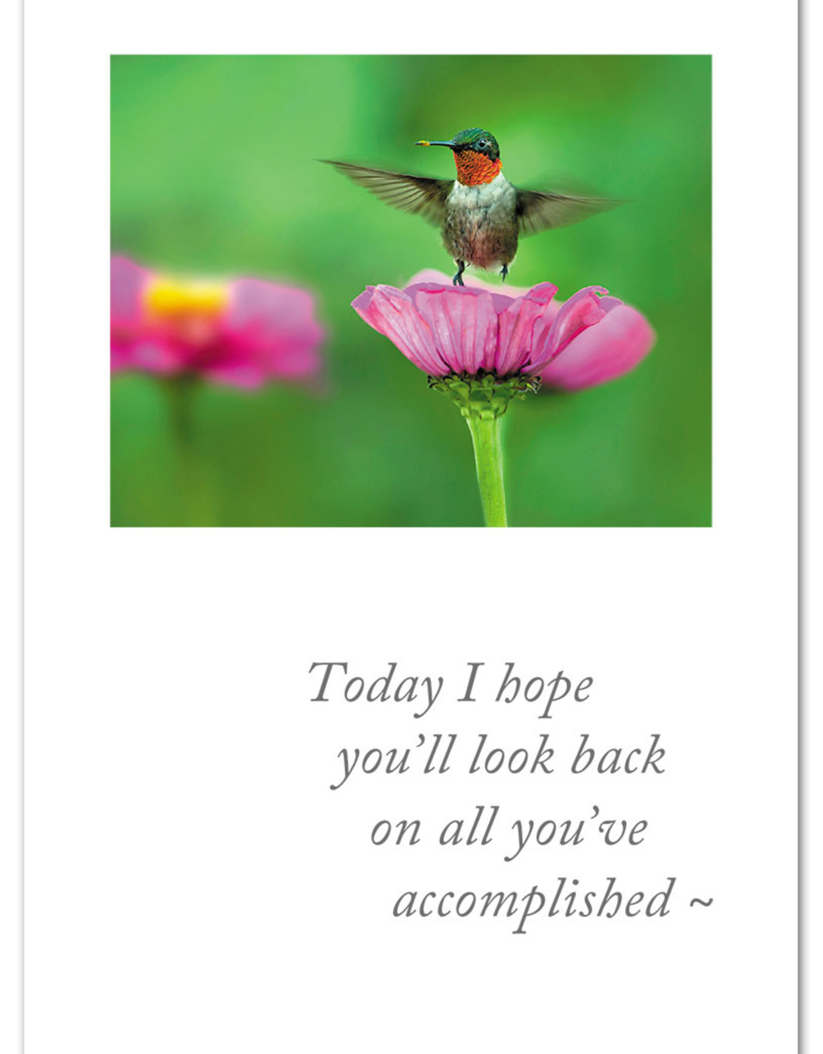 Cardthartic Cardthartic - Hummingbird on Flower Congratulations Card