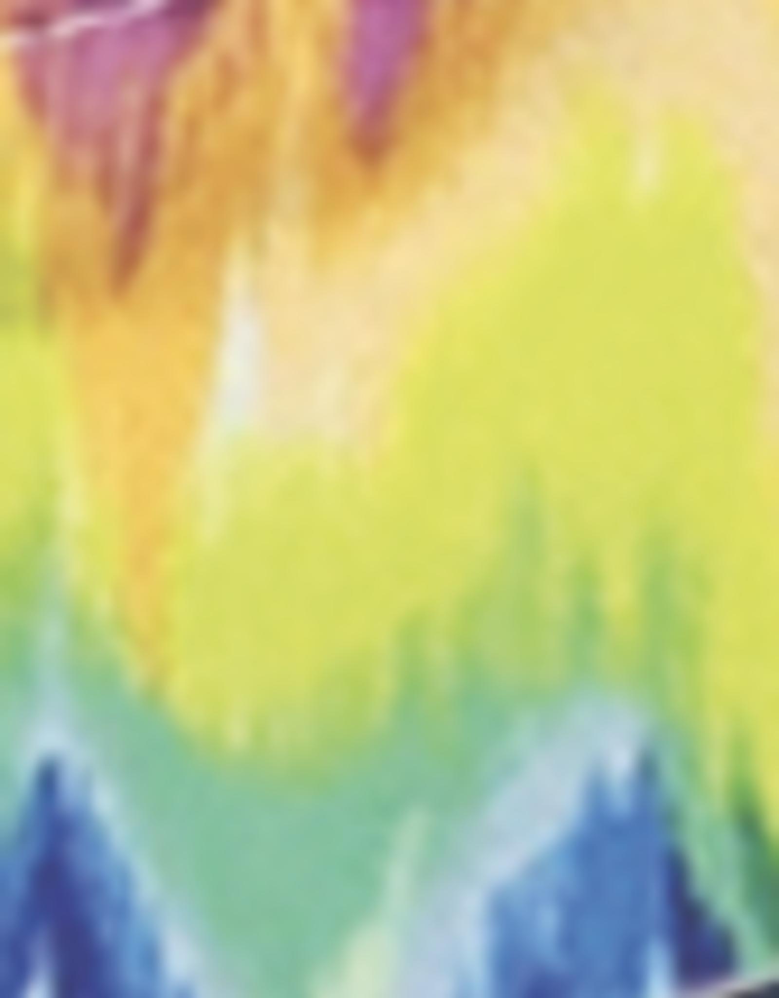 DM Merchandising Cotton Face Masks - Adjustable Straps - Rainbow
